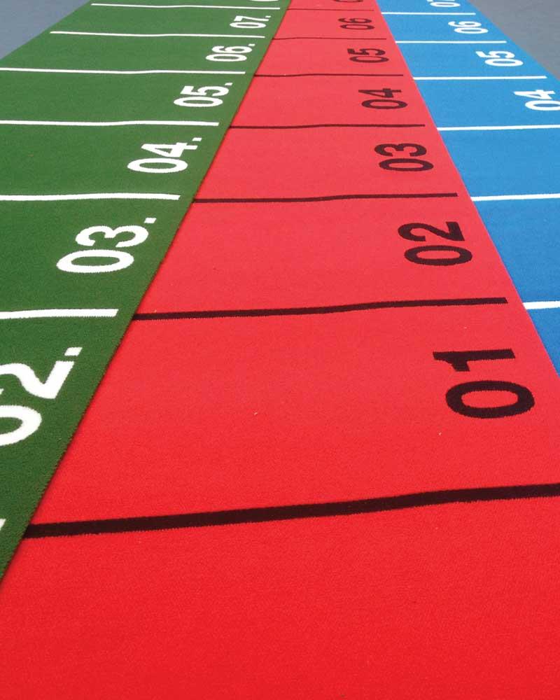 SAQ Sports Carpet for Sleds